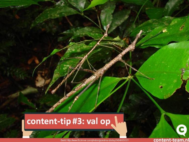 content-tip #3